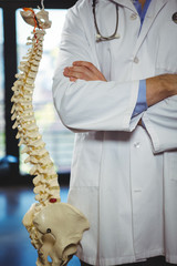 Physiotherapist standing beside spine model