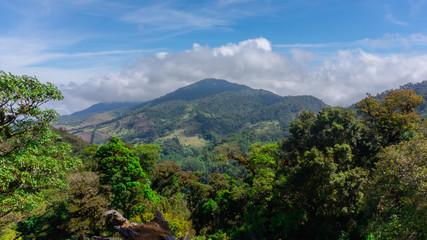 Volcán extinto con gran vegetación