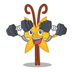 Fitness vanilla character cartoon style