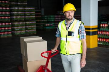Male worker pulling trolley in warehouse