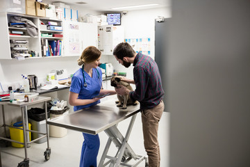 Vet examining dog with its owner