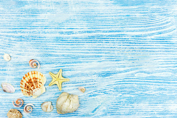 marine life decorations. sea shells and starfish on blue wooden background with copy space.