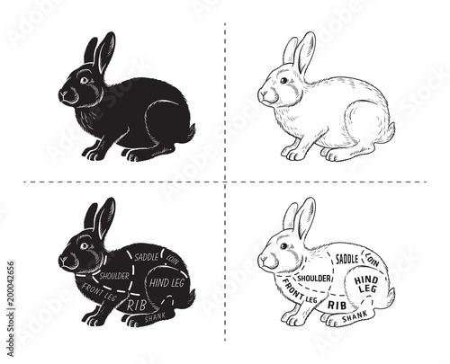 500_F_200042656_2efABY181VrzuopF5Zgj8jReXQyKJ44B cut of rabbit poster butcher diagram for groceries, meat stores