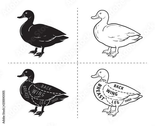 Typographic Duck Butcher Cuts Diagram Scheme Premium Guide Meat