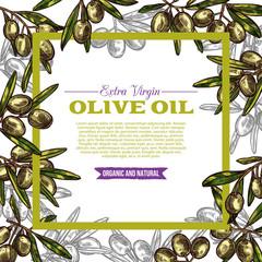 Olive oil label with green fruit and leaf frame