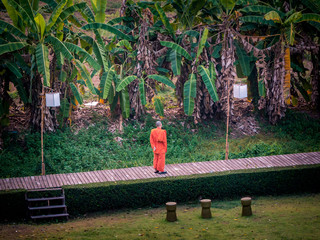 An unidentified Thai Monk is standing in a beautiful garden in Pai, Thailand