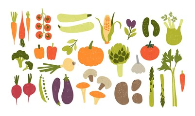 Collection of colorful hand drawn fresh delicious vegetables isolated on white background. Bundle of healthy and tasty vegan products, wholesome vegetarian food. Flat cartoon vector illustration.