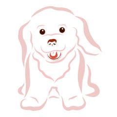 Bright cheerful fluffy puppy, joy