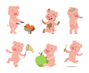 Cartoon funny pigs in action poses