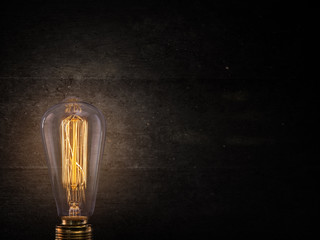 Vintage Edison light bulb on dark background.