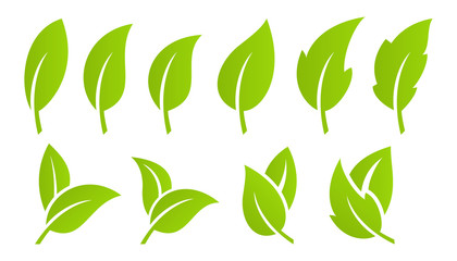 Green leaf set. Eco Wall mural