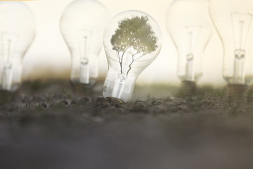 renewable energy with light bulbs that take energy from the sun, from plants and the land