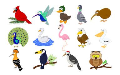 Big set of cartoon funny birds.  Birds collection. Vector illust