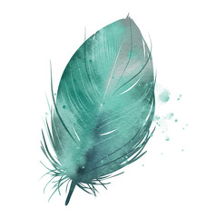 Turquoise feather, watercolor effect
