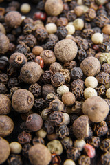 peppercorns 5 peppers