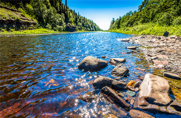 Forest river water stones landscape