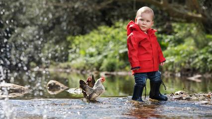 Little boy standing with chickens