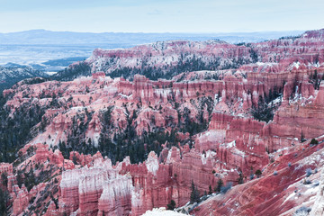 Scenic Landscape Of Bryce Canyon In PInk, USA