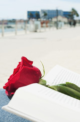 red rose and book for Saint George Day