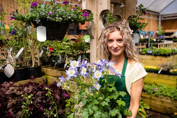 Female florist holding a potted plant