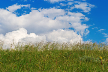 Green grass under blue sky with clouds. Rural landscape. Natural environment picture. Rough grassland.