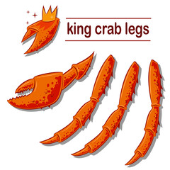 King crab legs and claws. Vector cartoon illustration of sea delicacies isolated on white background.