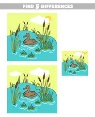 Find Differences Pond Duck