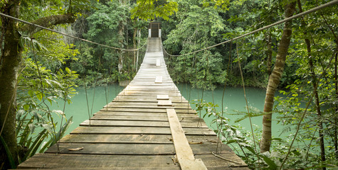 Bridge In Rio Blanco National Park Belize