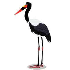 Saddle billed stork cartoon bird