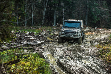 Dirty offroad car with dark forest on background.
