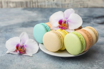 Colorful macarons in a plate on blue background. Macaron or Macaroon is sweet meringue-based confection. Decorated with orchid flowers