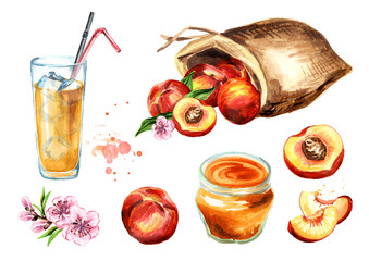 Peach set. Watercolor hand drawn illustration  isolated on white background.