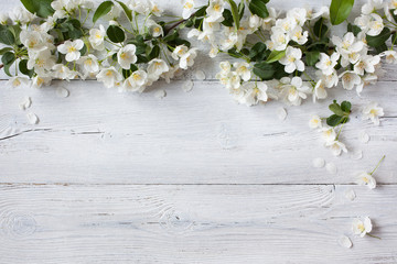 White wooden background with white flowering spring branches