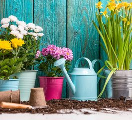 Image of colorful flowers in pots near wooden fence