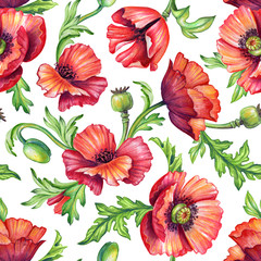seamless poppy pattern, botanical background, watercolor texture, floral ornament, red flowers green leaves on white