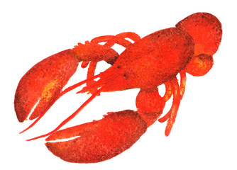 Lobster. Watercolor illustration. Lobster, seafood. Drawing for food packaging, print plates, napkins.