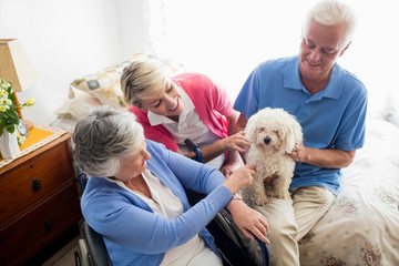 Senior couple and nurse taking care of a dog