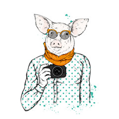 Hipster pig with human body and camera. Animal in clothes. Vector illustration.