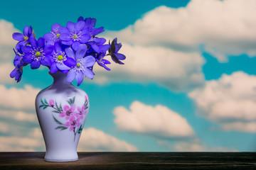flower bouquet Hepatica nobilis Schreb