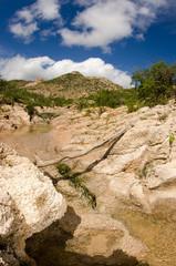 Desert creeks, Mexico.