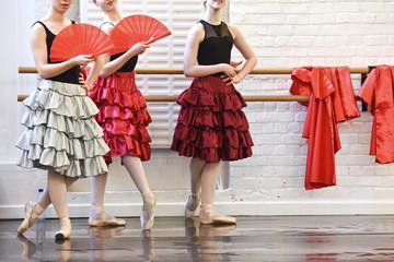 danse danseuse conservatoire corps