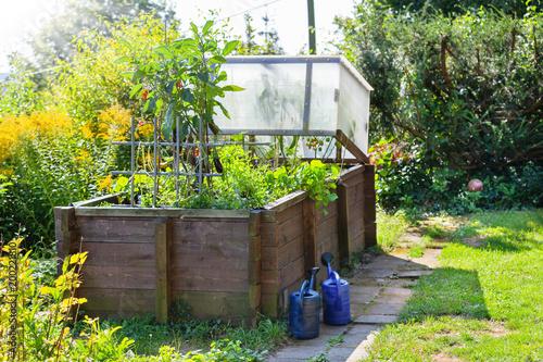 Hochbeet Im Sommer Mischkultur Im Garten Stock Photo And Royalty