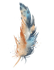 Orange blue feather, watercolor effect
