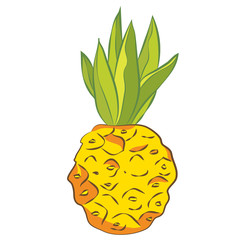 Bright, juicy and ripe pineapple Vector graphics