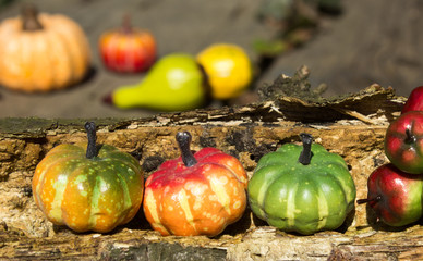 Decoration - pumpkins apples on old wood (2)