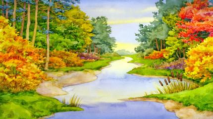 Autumn Forest Brook