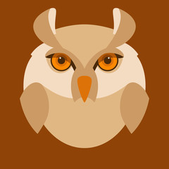 owl  head  face vector illustration flat style front