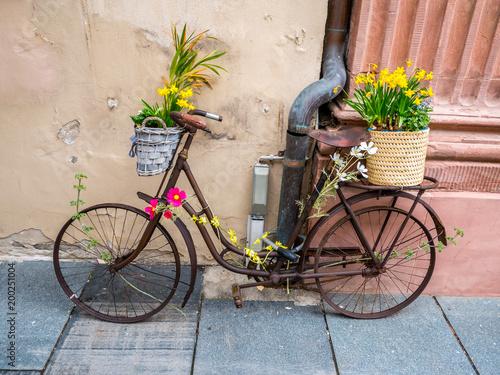 Altes fahrrad zur dekoration im fr hling stockfotos und lizenzfreie bilder auf - Dekoration fahrrad ...