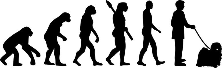 Puli evolution darwin