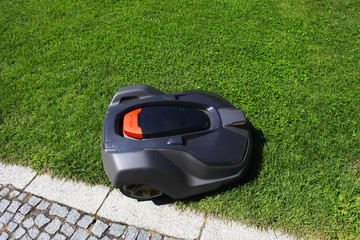 Robot lawnmower mows lawn, top view